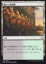 穢れた果樹園/Foul Orchard 【日本語版】 [PWD-土地C]