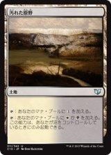 汚れた原野/Tainted Field 【日本語版】[C15-茶U]