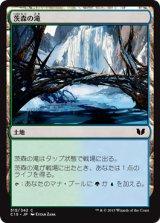 茨森の滝/Thornwood Falls 【日本語版】[C15-茶C]