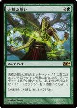 古樹の誓い/Oath of the Ancient Wood 【日本語版】 [M14-緑R]