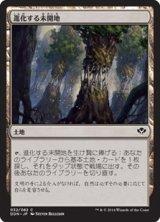 進化する未開地/Evolving Wilds 【日本語版】 [SVC-土地C]