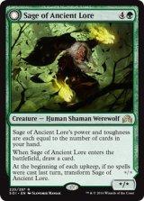 古き知恵の賢者/Sage of Ancient Lore 【英語版】 [SOI-緑R]《状態:NM》