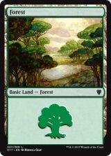 森/Forest No.307 【英語版】 [C17-土地]《状態:NM》