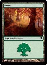 森/Forest No.243 【英語版】 [AVR-土地]《状態:NM》