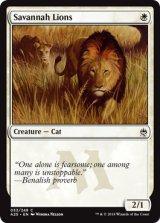 サバンナ・ライオン/Savannah Lions 【英語版】 [A25-白C]