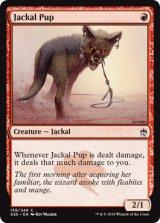 ジャッカルの仔/Jackal Pup 【英語版】 [A25-赤C]