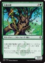 大使の樫/Ambassador Oak 【日本語版】 [A25-緑C]
