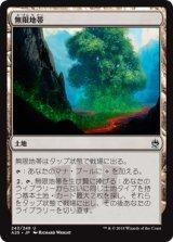 無限地帯/Myriad Landscape 【日本語版】 [A25-土地U]