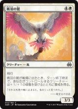 暁羽の鷲/Dawnfeather Eagle 【日本語版】 [AER-白C]