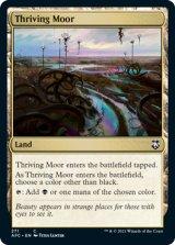 興隆する湿地帯/Thriving Moor 【英語版】 [AFC-土地C]