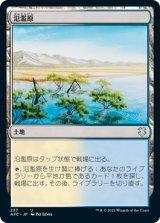 氾濫原/Flood Plain 【日本語版】 [AFC-土地U]