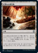 広漠なる変幻地/Terramorphic Expanse 【日本語版】 [AFC-土地C]