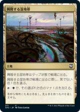 興隆する湿地帯/Thriving Moor 【日本語版】 [AFC-土地C]