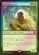 [FOIL] 夢の円環のドルイド/Circle of Dreams Druid 【日本語版】 [AFR-緑R]