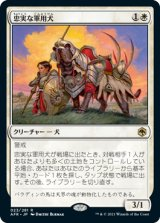 忠実な軍用犬/Loyal Warhound 【日本語版】 [AFR-白R]