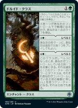 ドルイド・クラス/Druid Class 【日本語版】 [AFR-緑U]