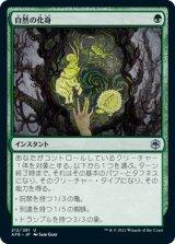 自然の化身/Wild Shape 【日本語版】 [AFR-緑U]