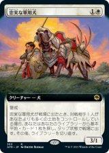 忠実な軍用犬/Loyal Warhound (拡張アート版) 【日本語版】 [AFR-白R]