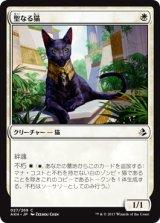 聖なる猫/Sacred Cat 【日本語版】 [AKH-白C]《状態:NM》