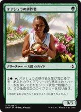 オアシュラの耕作者/Oashra Cultivator 【日本語版】 [AKH-緑C]《状態:NM》