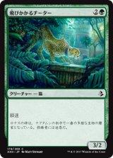 飛びかかるチーター/Pouncing Cheetah 【日本語版】 [AKH-緑C]《状態:NM》