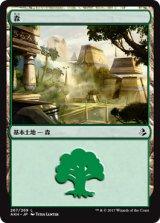 森/Forest 【日本語版】 [AKH-No.267]