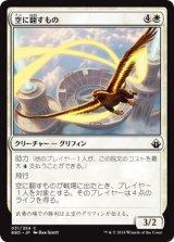 空に翻すもの/Skystreamer 【日本語版】 [BBD-白C]