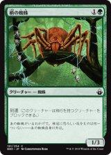 梢の蜘蛛/Canopy Spider 【日本語版】 [BBD-緑C]