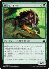 残忍なハイドラ/Feral Hydra 【日本語版】 [BBD-緑U]