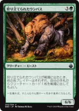 狩り立てられたウンパス/Hunted Wumpus 【日本語版】 [BBD-緑U]