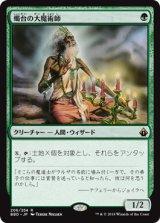 燭台の大魔術師/Magus of the Candelabra 【日本語版】 [BBD-緑R]