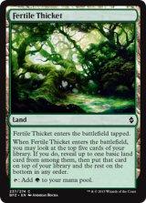 肥沃な茂み/Fertile Thicket 【英語版】 [BFZ-土地C]