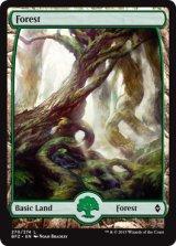 森/Forest No.270【英語版】 [BFZ-土地]《状態:NM》