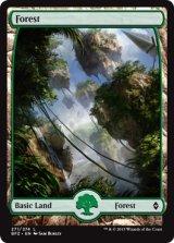 森/Forest No.271【英語版】 [BFZ-土地]《状態:NM》