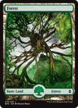 森/Forest No.273【英語版】 [BFZ-土地]《状態:NM》