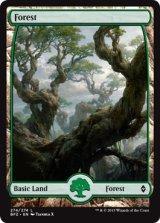 森/Forest No.274【英語版】 [BFZ-土地]《状態:NM》