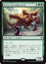 オラン=リーフのハイドラ/Oran-Rief Hydra【日本語版】 [BFZ-緑R]《状態:NM》