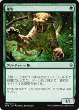 鎌豹/Scythe Leopard【日本語版】 [BFZ-緑U]《状態:NM》