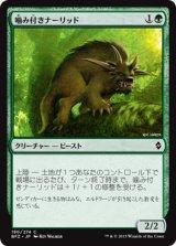 噛み付きナーリッド/Snapping Gnarlid【日本語版】 [BFZ-緑C]《状態:NM》