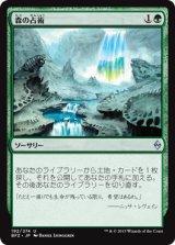 森の占術/Sylvan Scrying【日本語版】 [BFZ-緑U]《状態:NM》