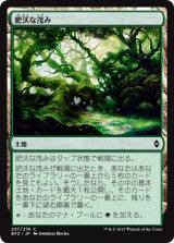 肥沃な茂み/Fertile Thicket【日本語版】 [BFZ-土地C]《状態:NM》