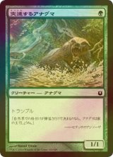 [FOIL] 突進するアナグマ/Charging Badger 【日本語版】 [BNG-緑C]