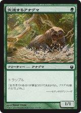 突進するアナグマ/Charging Badger 【日本語版】 [BNG-緑C]