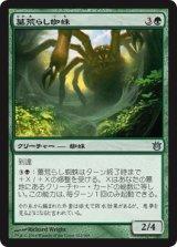 墓荒らし蜘蛛/Graverobber Spider 【日本語版】 [BNG-緑U]《状態:NM》