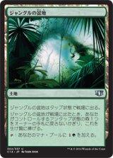 ジャングルの盆地/Jungle Basin 【日本語版】 [C14-土地U]