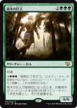 高木の巨人/Arbor Colossus 【日本語版】 [C15-緑R]