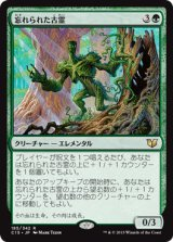忘れられた古霊/Forgotten Ancient 【日本語版】 [C15-緑R]《状態:NM》