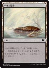 やせた原野/Barren Moor 【日本語版】[C15-茶C]
