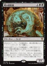 屍の原形質/Necroplasm 【日本語版】 [C16-黒R]