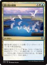 渡り鳥の経路/Migratory Route 【日本語版】 [C16-金U]